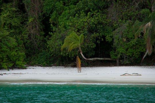 La bahía de Angra dos Reis se ramifica en dos mil playas de postal caribeña. Foto: Martín Mangudo - Banco de Imágenes Embajada del Brasil en Buenos Aires