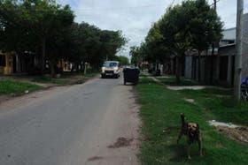 La mujer tenía 80 años y fue atacada en su domicilio por un Bullmastiff