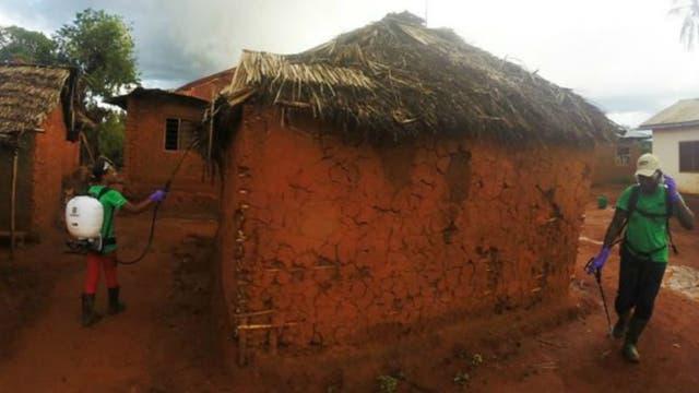 Las pruebas de campo en Tanzania dieron muy buenos resultados, con una reducción de dos tercios de la población de mosquitos