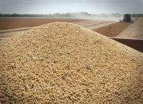En la Argentina la soja cerró una semana positiva