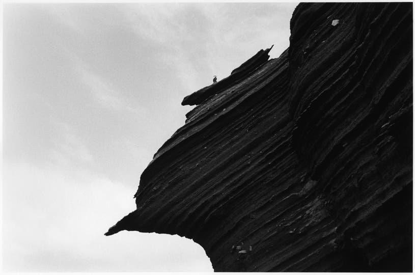 1.La tapa. Siento que tiene el espíritu bestia de Decepción. Está lo negro, lo medio lunar y es en el límite, cuando empieza la zona prohibida, el área restringida que no se puede pisar. No iba a ser la tapa, pero se impuso. La integración del pájaro con la roca. Es de las más salvajes. . Foto: Adriana Lestido