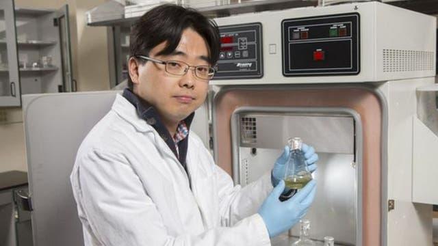 Seokheun assistente professore Choi ha lavorato cinque anni in batterie di carta e di energia generate da batteri
