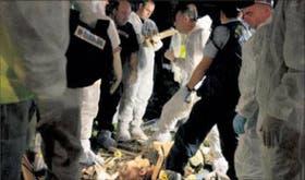 Policías israelíes rodean el cuerpo de una mujer en el lugar del atentado de ayer en la ciudad de Hadera