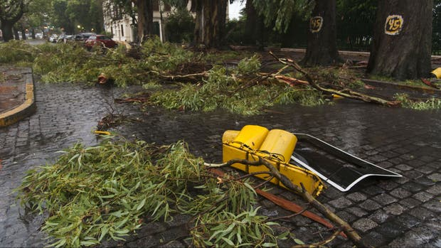 El temporal causó destrozos en la ciudad de Rosario