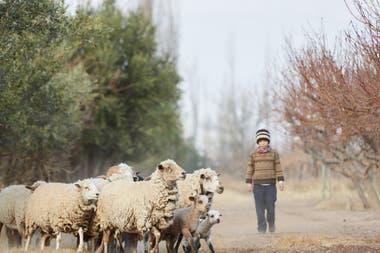 Mendoza apuesta al turismo rural