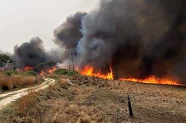 En Corrientes las localidades afectadas son Santa Rosa, Santa Ana, San Cayetano, Paso de la Patria, Tatacúa, Tabay, Saladas, General Paz y San Luis del Palmar