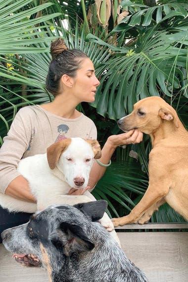 """Durante la cuarentena, Juana Viale adoptó dos perros del refugio de la ex modelo. """"Una hembrita y un macho. Ellos fueron abandonados y ayer llegaron a mi hogar"""", escribió la nieta de Mirtha en su Instagram el 23 de abril."""