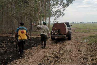 En un establecimiento de 500 hectáreas en Chavarría, gracias al trabajo rápido del personal solo se afectaron cinco hectáreas