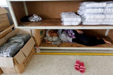Una siesta en un estante luego del almuerzo