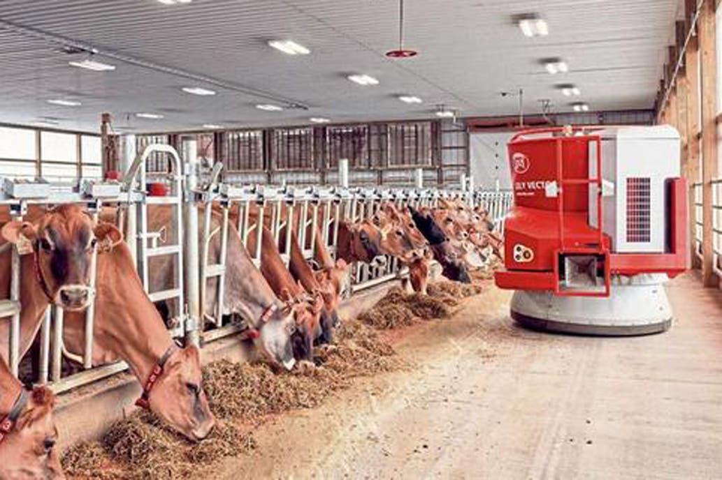 Visita a una granja con robots e incentivos para las vacas