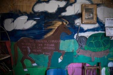"""""""No hay barrera, cerradura ni cerrojo que puedan imponer a la libertad de mi mente"""", dice en una pared"""