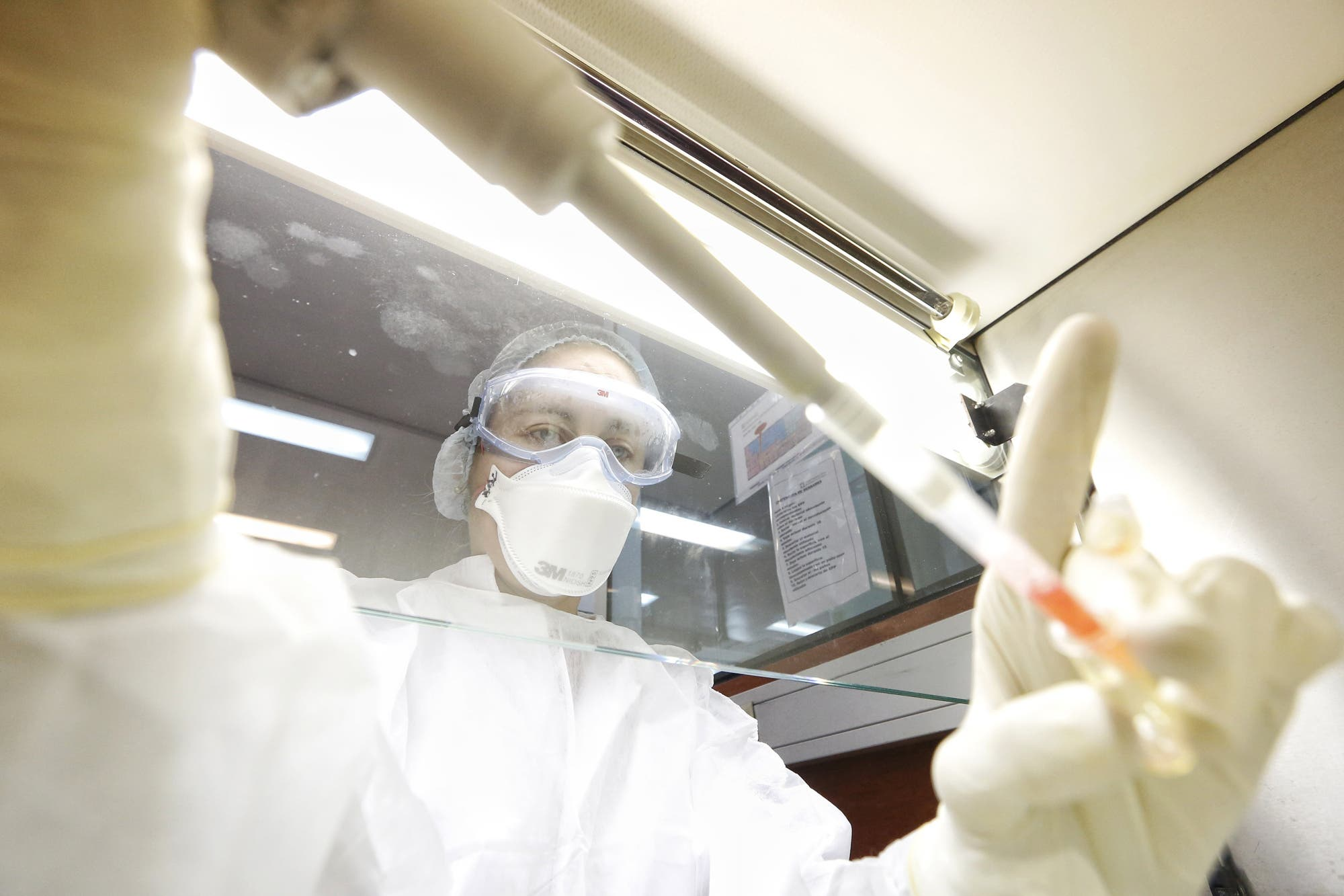 Coronavirus en la Argentina: ¿cuáles son las seis provincias que empezarán a usar la prueba diagnóstica?