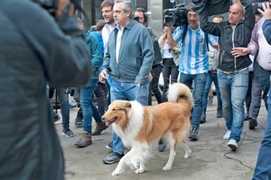 Alberto Fernández sacó a pasear a su perro Dylan