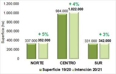 Intención de siembra de trigo por zonas en el área de influencia de la Bolsa de Cereales de Bahía Blanca