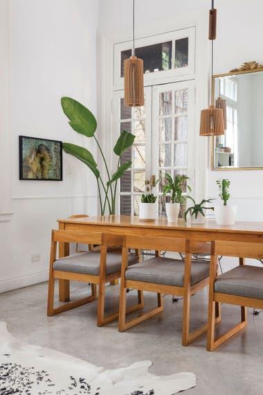 ab912a93ba 8 plantas de interior que están de moda y los cuidados que necesitan ...