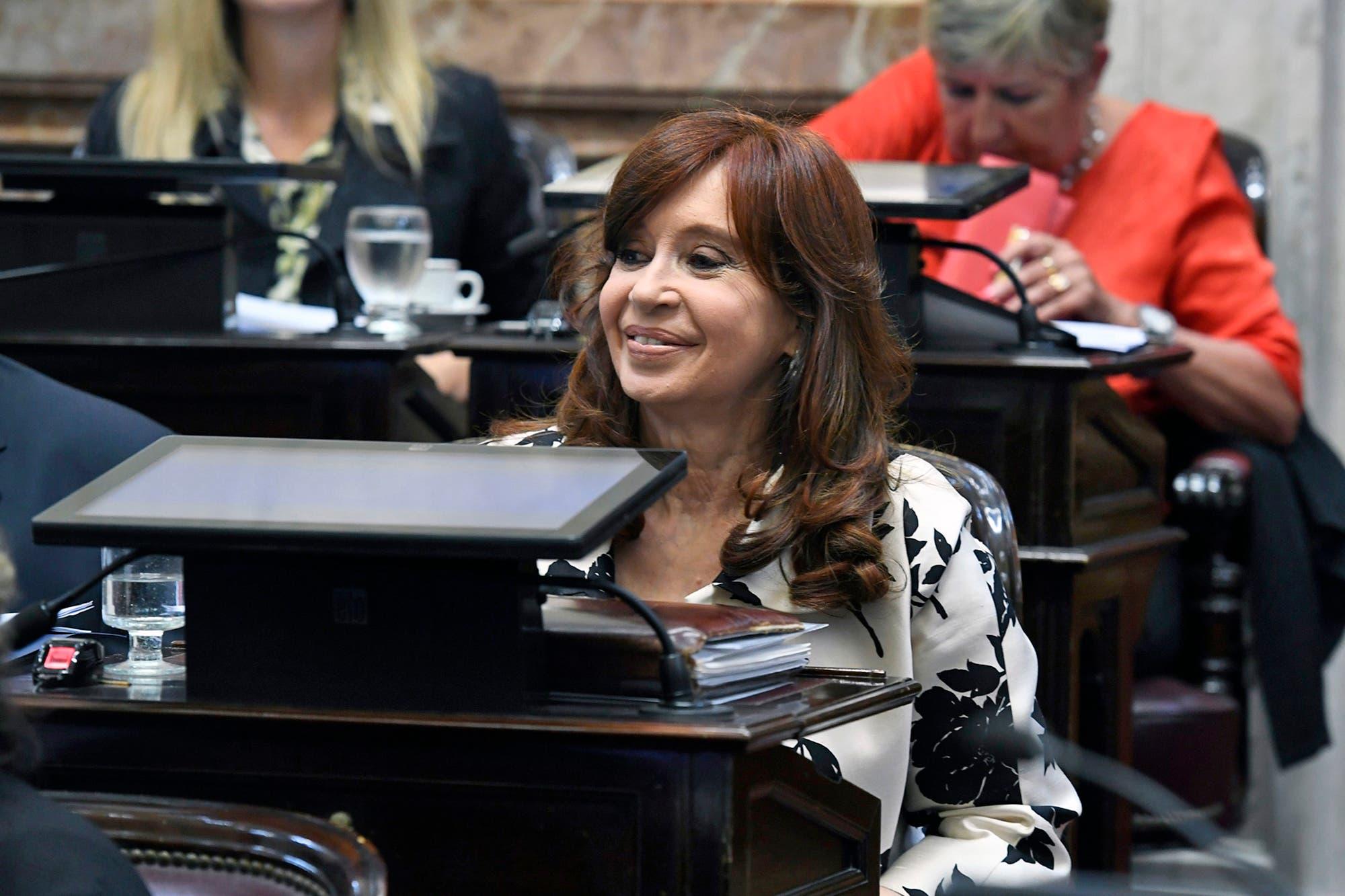"""División entre Cristina y el PJ en el Senado: """"hay dos bloques"""", ratificó Caserio"""