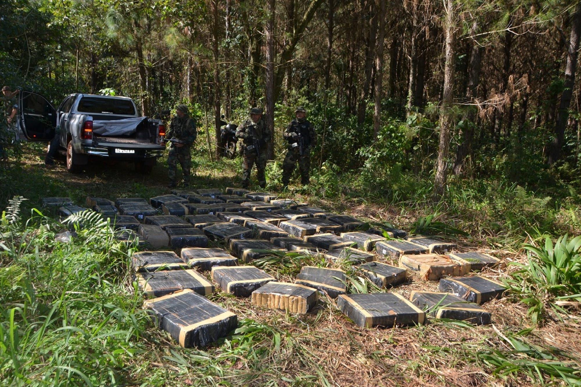 Secuestran 7500 kilos de marihuana en la selva misionera