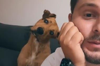 """Un hombre grabó a su pequeño perro cuando pronunciaba la palabra """"calle"""" y se volvió viral en las redes sociales"""