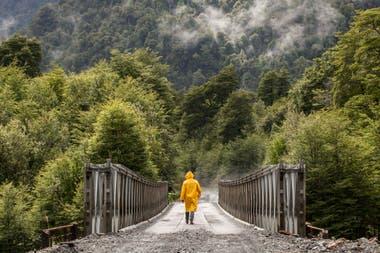 El Parque Pumalín, una de las áreas protegidas que atraviesa la carretera austral y parte del proyecto de Tompkins de convertirla en una ruta escénica. Gustavo Castaing