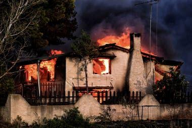 Incendio forestal en Grecia: aumentan a 79 los muertos mientras buscan desaparecidos entre las cenizas