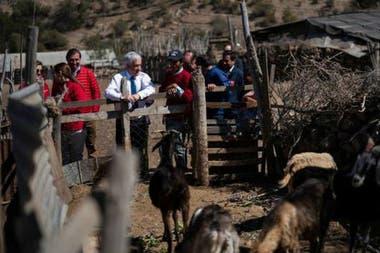 """""""Estamos haciendo todos los esfuerzos para que esta sequía, que nos ha golpeado durante tanto tiempo no signifique más sufrimientos"""", dijo el presidente de Chile, Sebastián Piñera, durante una visita a la ciudad de Punitaqui, en la región de Coquimbo"""