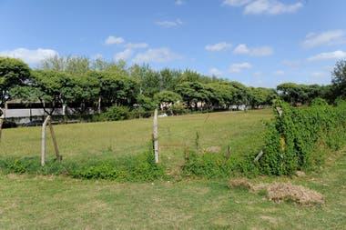 Los espacios forman parte del parque La Isla de la Paternal y para los vecinos de la zona son el eje de la resistencia al emprendimiento inmobiliario