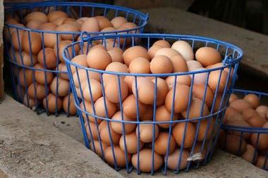 Es mejor no poner los huevos en una misma canasta...