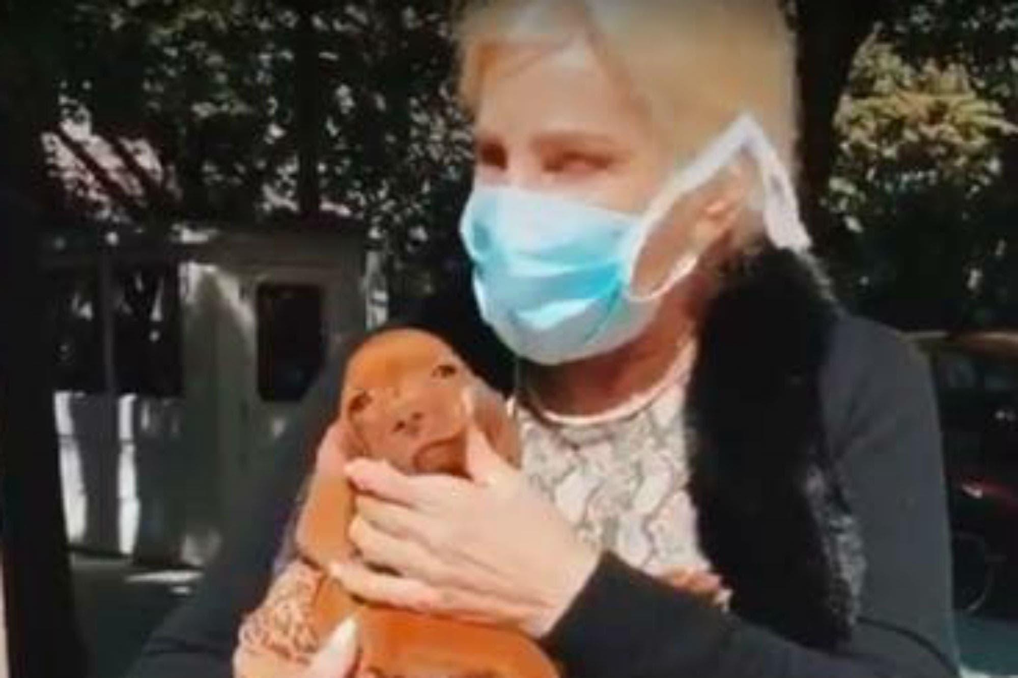 """Susana Giménez y otro curioso video con su perra Rita: """"¡Qué loca de miércoles!"""""""