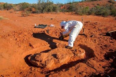 Los ejemplares de Ingentia prima son unos 30 millones de años más antiguos que el gigante más viejo previamente conocido