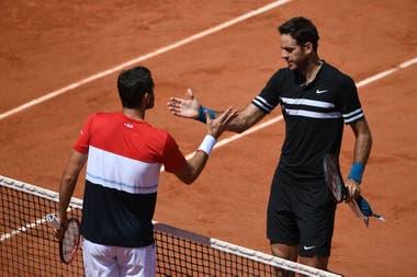 Del Potro ganó y es semifinalista de Roland Garros