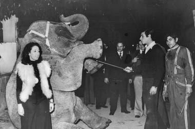 La elefanta Mara actuando en el circo Sudamericano en la década del 70