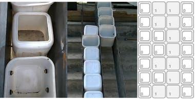 Detalle de la construcción y reemplazo de los tachos por ladrillos
