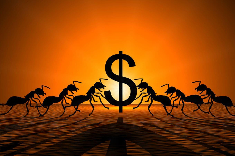 5 tips para fumigar tus gastos hormiga