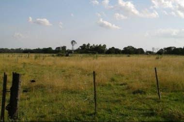 Las tierras tienen delimitaciones con alambrados, según los herederos y se hace producción ganadera