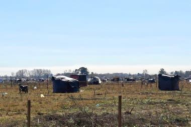 Terrenos ocupados en Guernica provincia de Buenos Aires