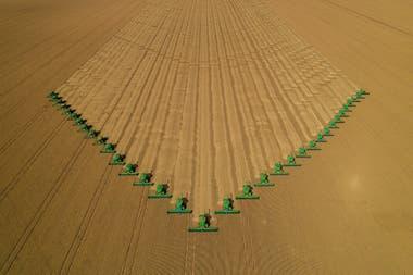 Una imagen de la cosecha anterior que los productores brasileños esperan repetir durante los primeros meses de 2021