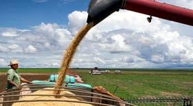 América latina tiene un papel clave en la producción de alimentos