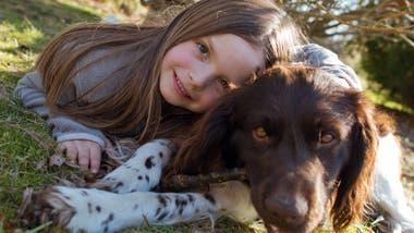 Los perros se apoyan en nosotros para demostrarnos su confianza.