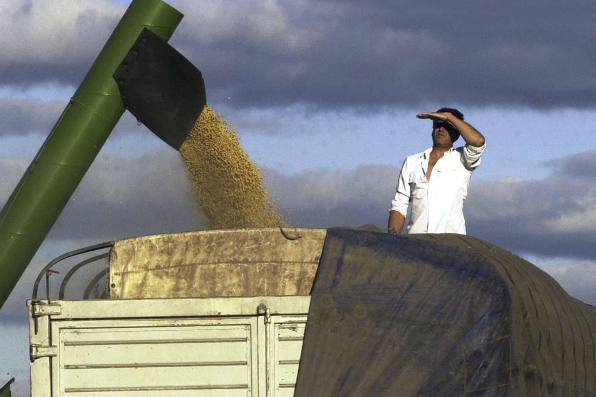 Agroindustria no dará marcha atrás en una norma rechazada por corredores y exportadores