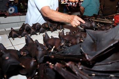 La venta de murciélagos quedó en la mira desde el inicio del brote