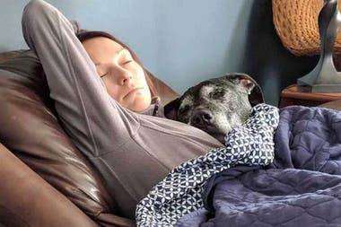 Dormir con nosotros y en nuestra cama es una manera de demostrarnos su cariño ya que ellos, en la naturaleza, duermen juntos y en manada.
