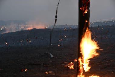 Postes quemados, cables caídos, quinchos destruídos en Villa Carlos Paz