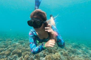 Martina es periodista ambiental, viajera, ecologista, protectora del océano e instructora de buceo. Dirigió Missing Sharks, un documental sobre la caza de tiburones en Panamá.