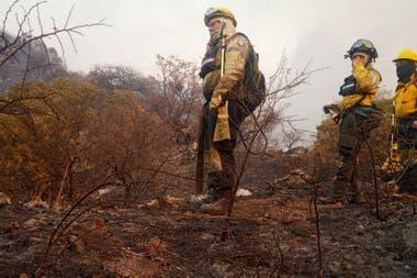 El fuego arrasó en el último mes unas 40.000 hectáreas.