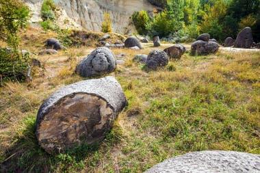 """La reacción química entre los minerales que trae la lluvia y los sustratos que conforman las rocas produce el """"crecimiento"""" de las Trovants"""