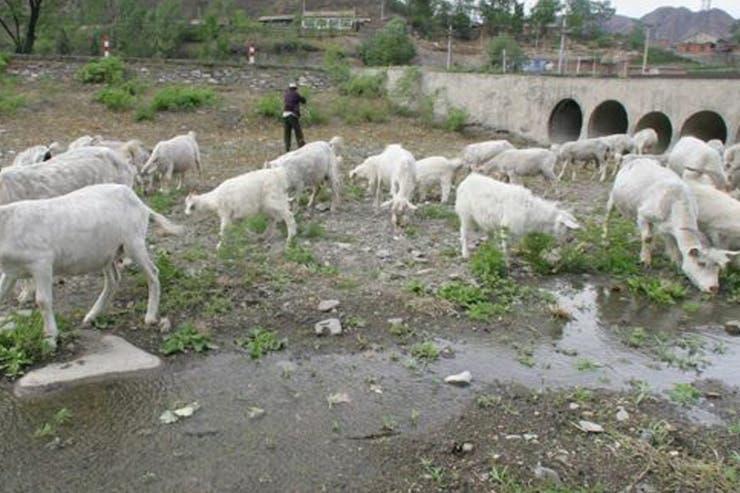 Las sequías han afectado las vías fluviales cerca de Pekín