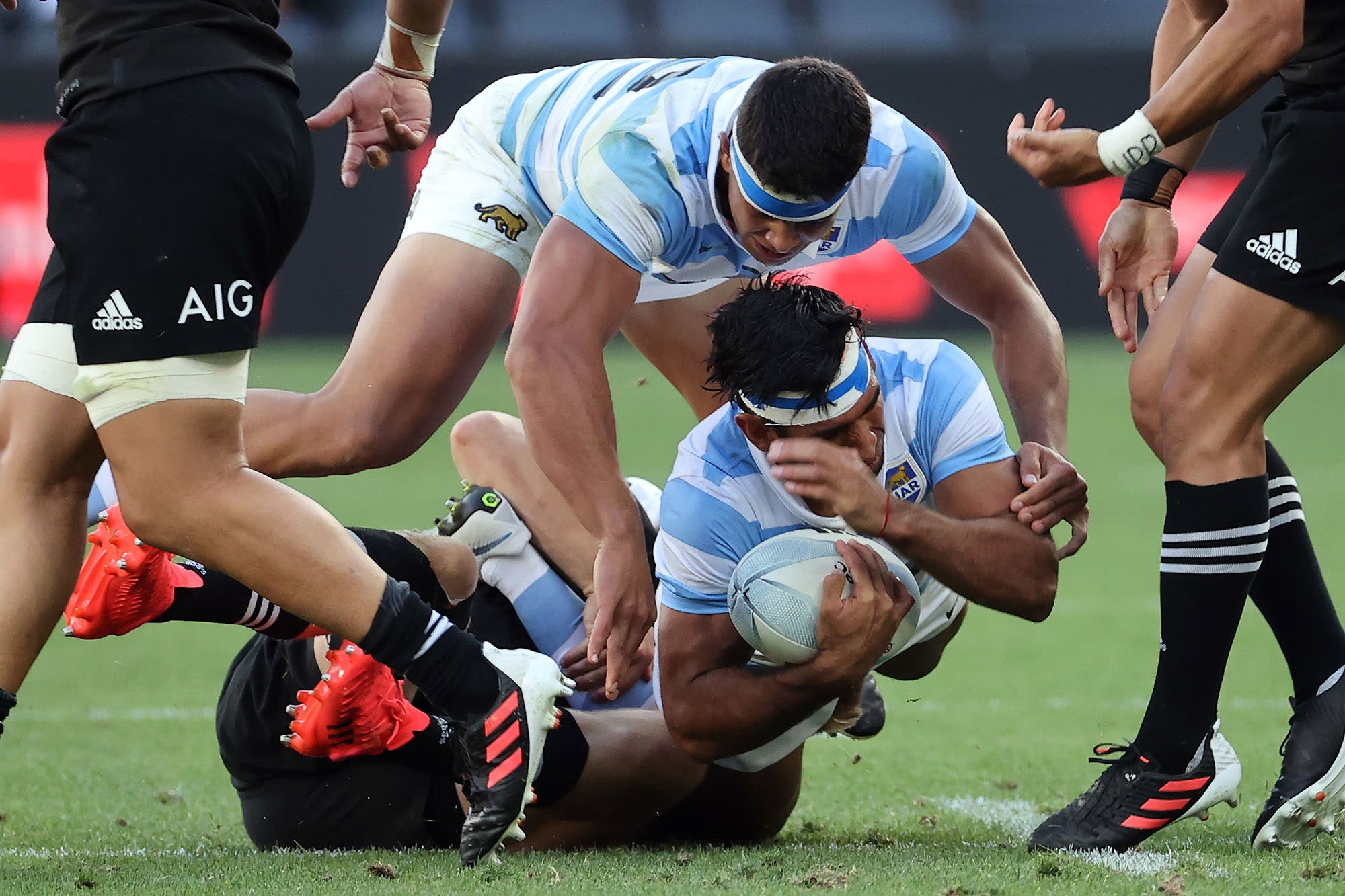 ¡Histórico! Los Pumas se impusieron con autoridad a los All Blacks en el Tri-Nations: 25-15