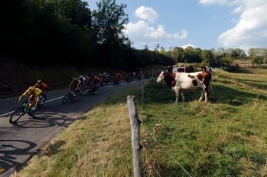 El Tour de Francia, entre la velocidad de los ciclistas y la particularidad del contexto en el que se corre