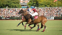 After-Polo de HSBC en Palermo