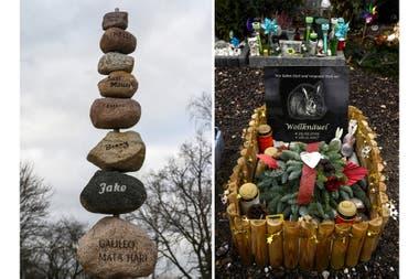 Unas piedras inscritas con los nombres de mascotas enterradas en un área común y una tumba de un conejo